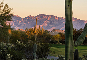 The Highlands at Dove Mountain Evening View